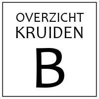B - KRUIDEN EN SPECERIJEN DIE BEGINNEN OP 'B'