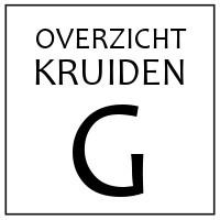 G - KRUIDEN EN SPECERIJEN DIE BEGINNEN MET 'G'