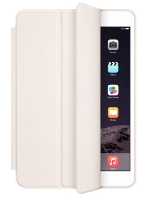 iPad Air 2 Smart Case Wit