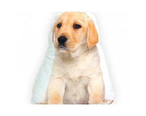 Honden decoratiekussens