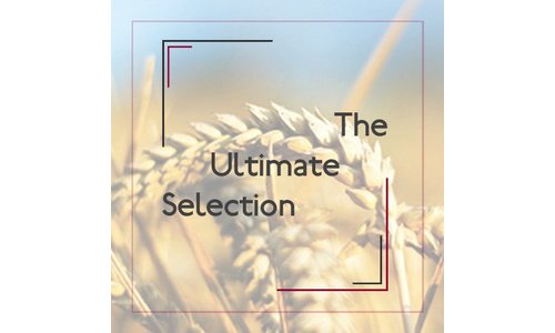The Ultimate Selection