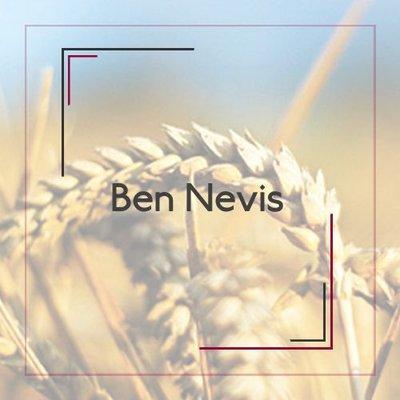 Ben Nevis
