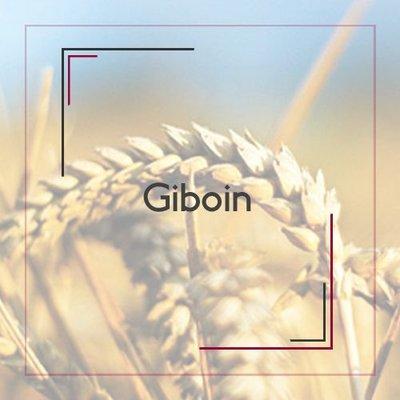 Giboin