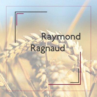 Raymond Ragnaud