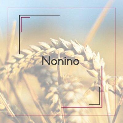 Nonino