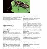 De Nederlandse boktorren  (Cerambycidae)
