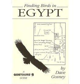 Finding birds in Egypt
