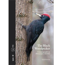 The Black Woodpecker
