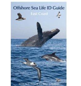 Offshore Sea Life ID Guide - East Coast