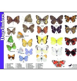 Herkenningskaart Vlinders