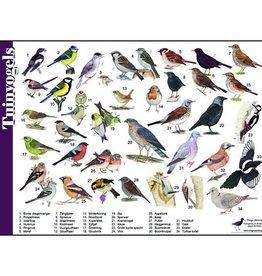 Tringa Paintings Herkenningskaart Tuinvogels