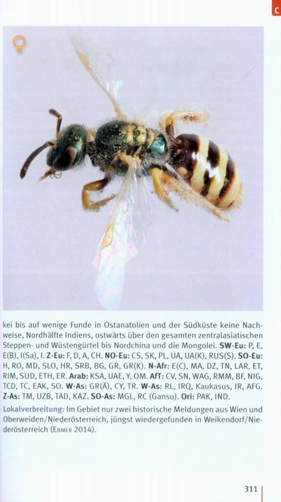 Taschenlexikon der Wildbienen Mitteleuropas