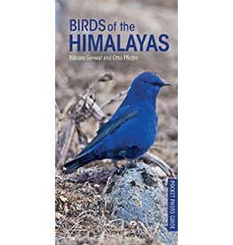 Birds of Himalayas