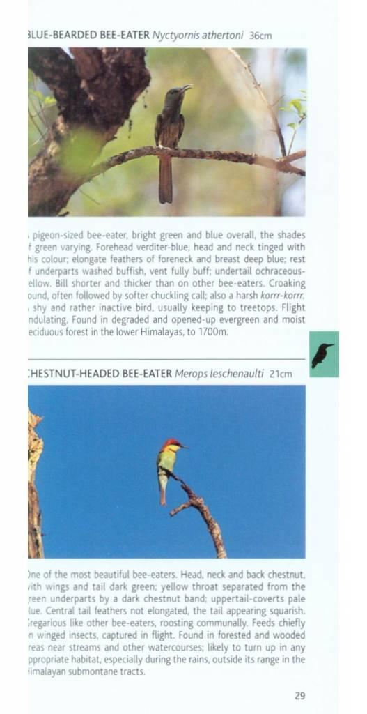 Birds of Himalayas