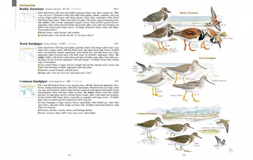 A Field Guide to the Birds of Taiwan