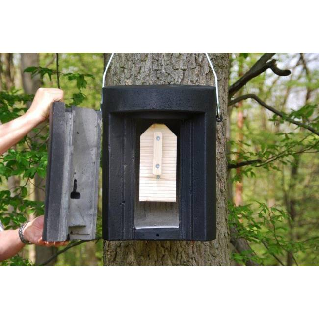 Schwegler 1FW Bat hibernation box