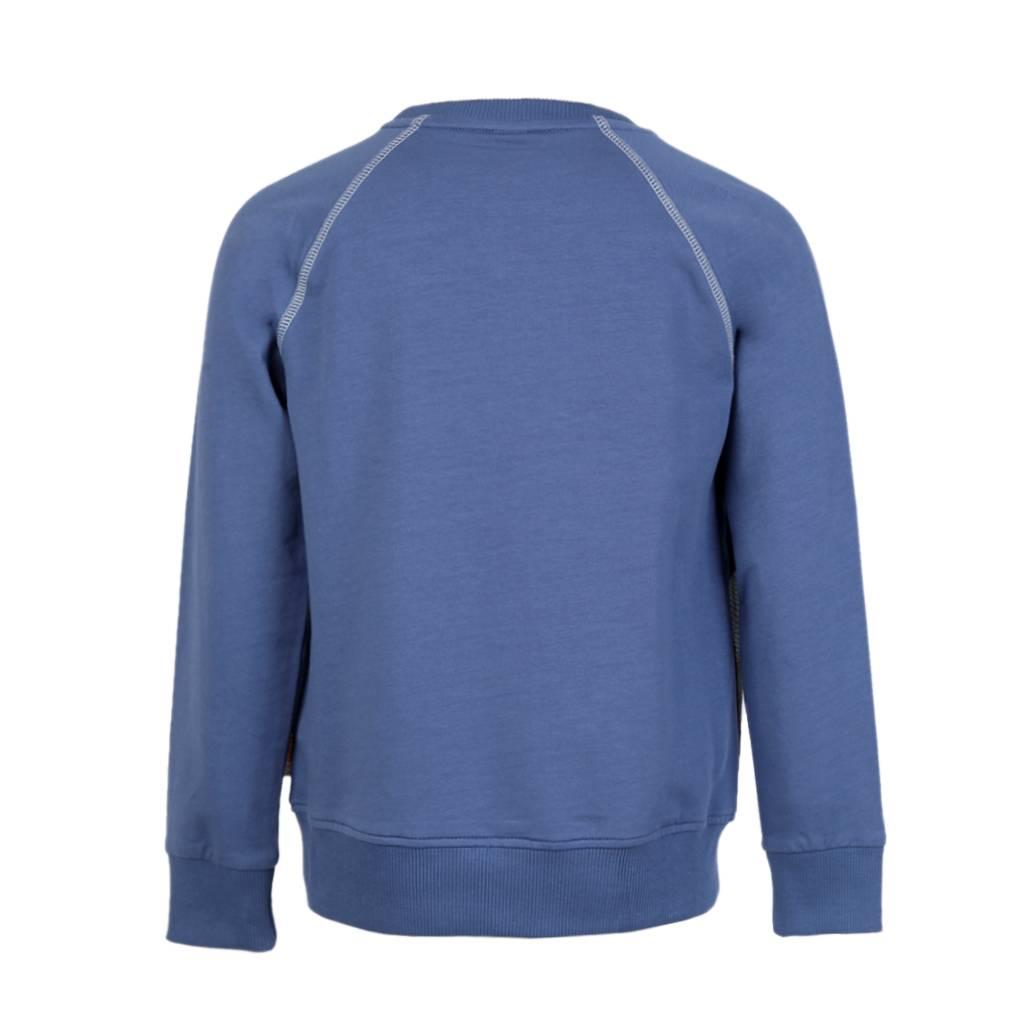 sweater Jake iguana