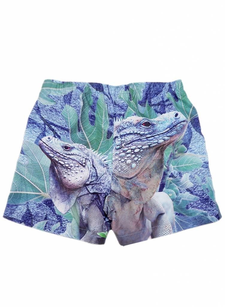 swim shorts Surfy iguana