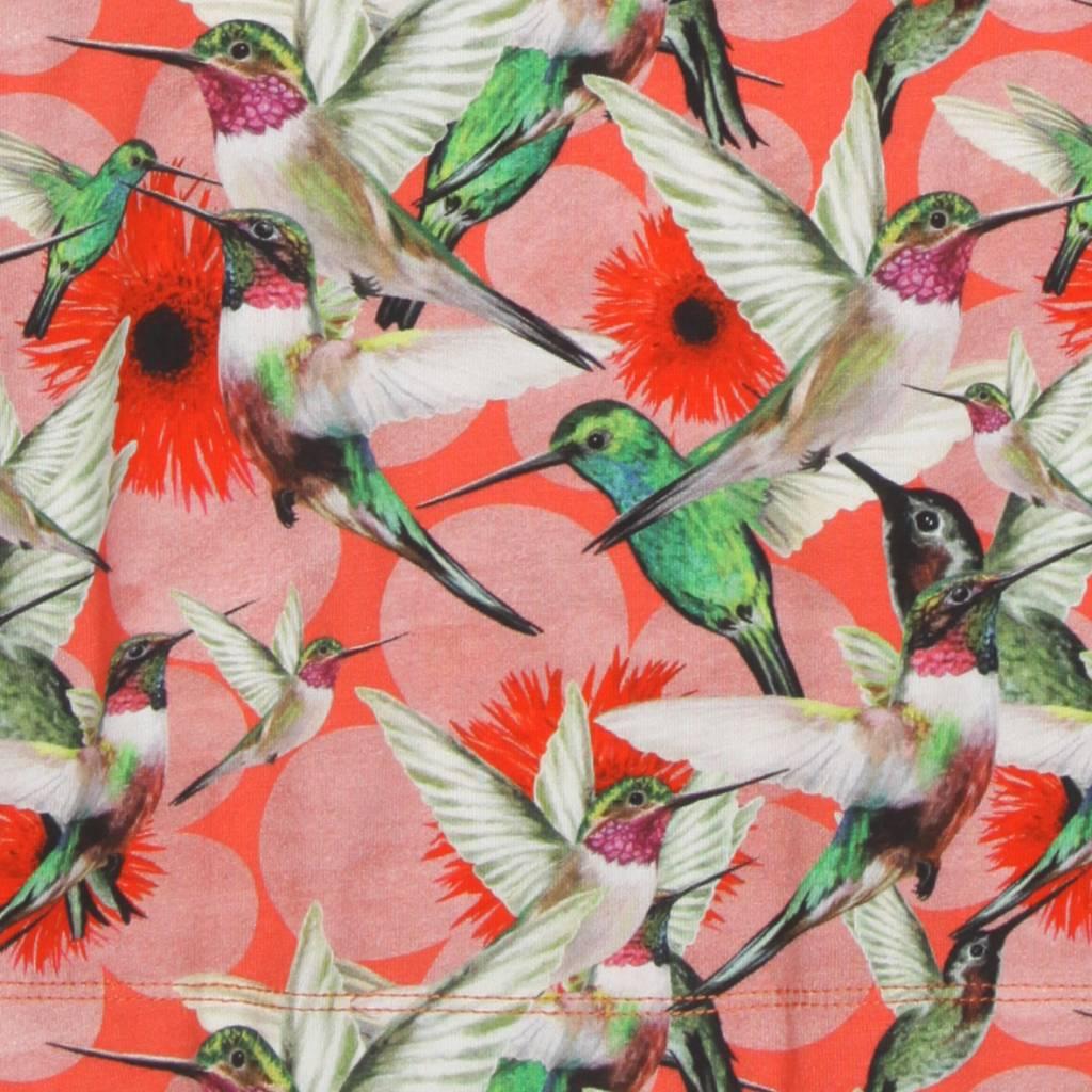 jurkje Osaka humming birds