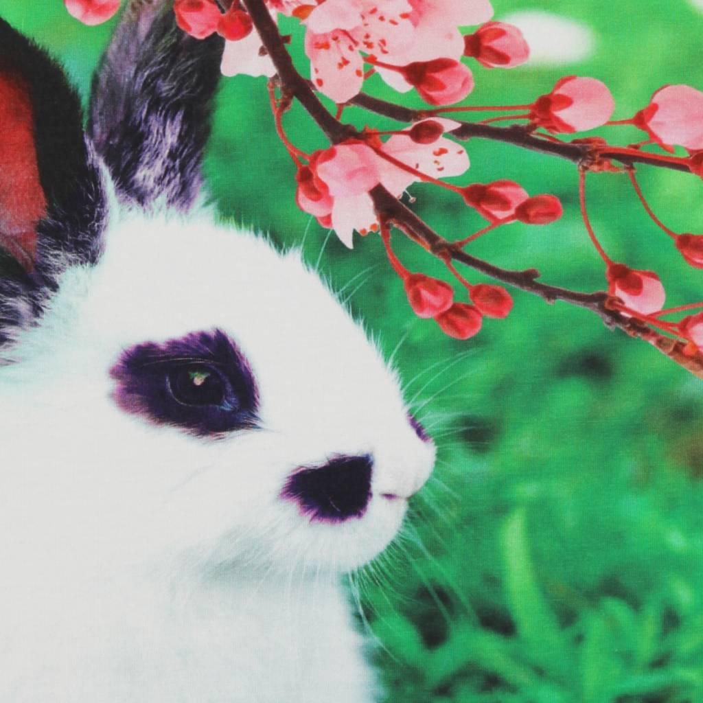sweater Stella rabbit