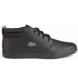 Lacoste Amphill Terra zwart sneakers heren