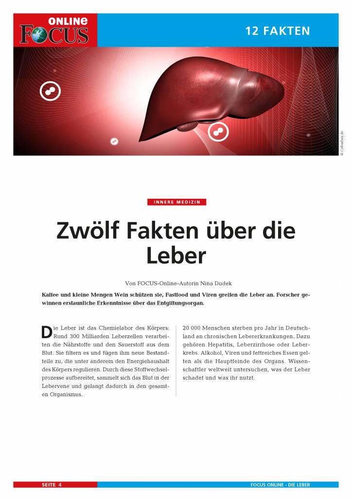 FOCUS Online Die Leber - Chemielabor des Körpers
