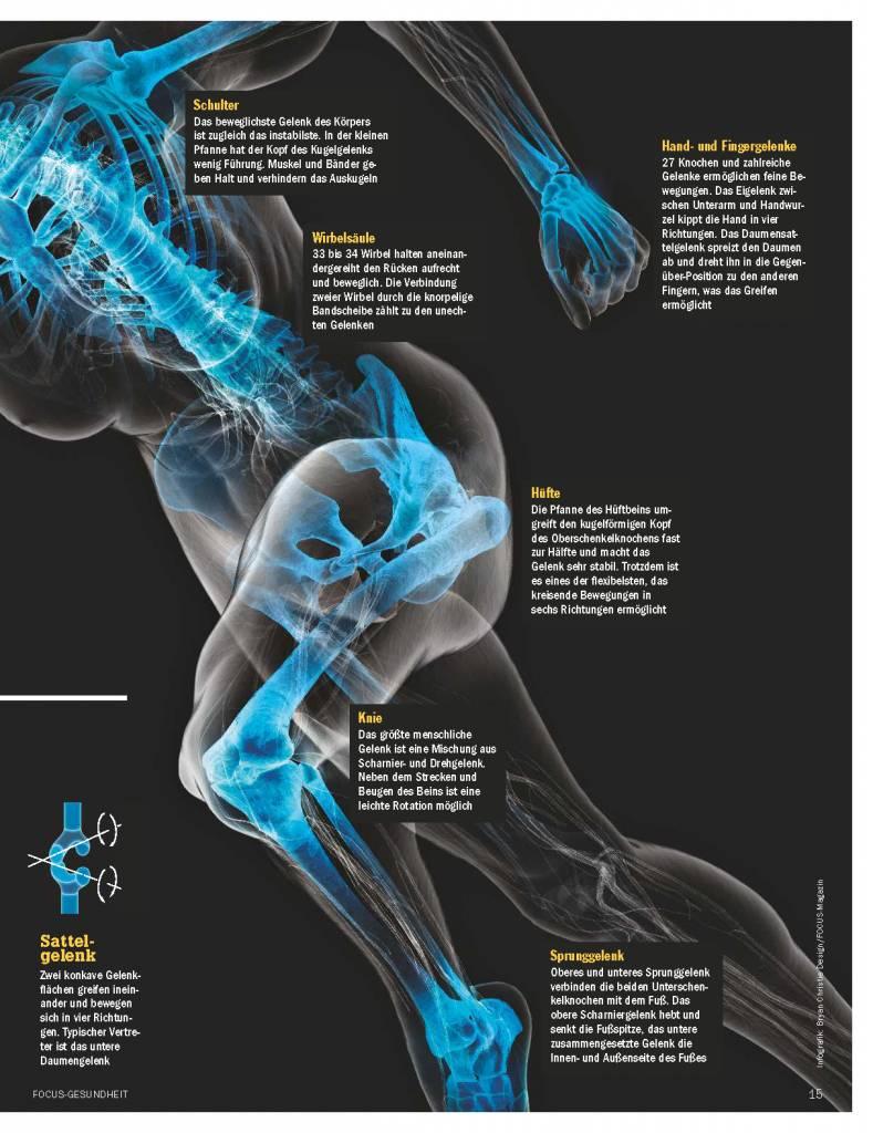 FOCUS Die neuen Strategien für gesunde Knochen und Gelenke