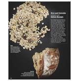 FOCUS FOCUS Gesundheit - Gesund Essen und Abnehmen 2013