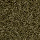 Onlineaquarium spullen Spirulina granulaat