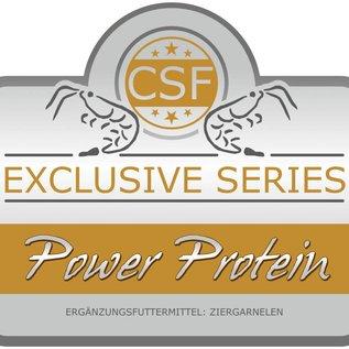 CSF Power Protein
