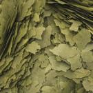 Onlineaquarium spullen Vlokvoer 3 algen