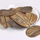 Onlineaquarium spullen Kokoparablatt 10-18 cm