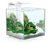 Nano aquaria (10-40 liter)