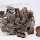 Onlineaquarium spullen Badam noot 5-8cm