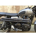 """MASS Moto """"Mohave"""" Exhaust Line (stainless steel)"""