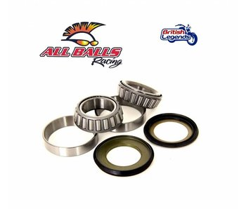 Fork Bearing Kit (Kawasaki)