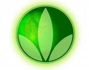 Wat is Herbalife?