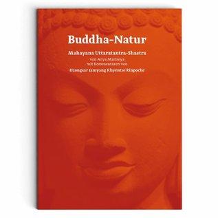 Buddha-Natur 1. Auflage