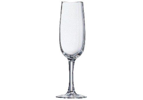 Arcoroc Elisa Champagne-Glas-16CL | 24 Stück