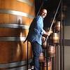 Chardonnay Laicale Salento Bianco Apollonio - Puglia, Italië