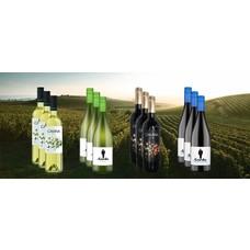 Voordeel Pakket Spanje bestaande uit 12 flessen wijn!
