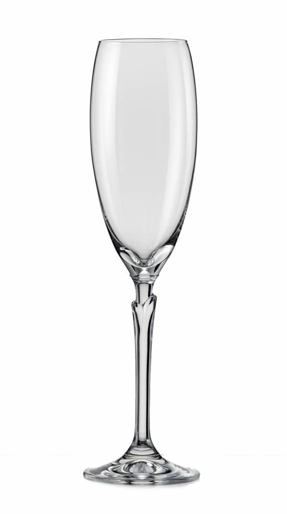 Crystalex Champagneglazen Lilly 220ml