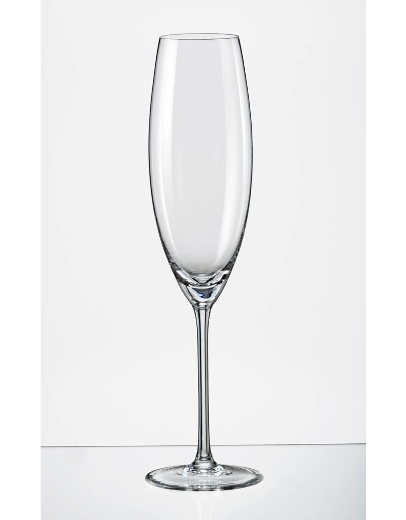 Grandioso Champagneglazen 230ml