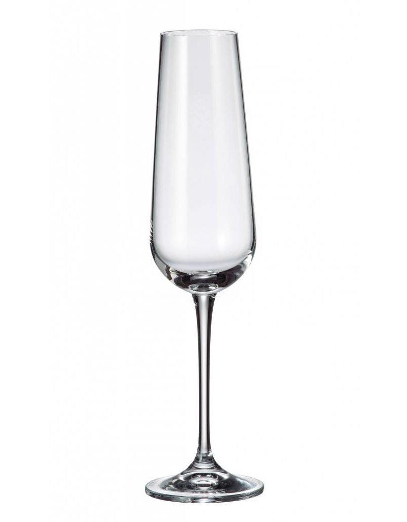 Amundsen Champagneglazen 220ml