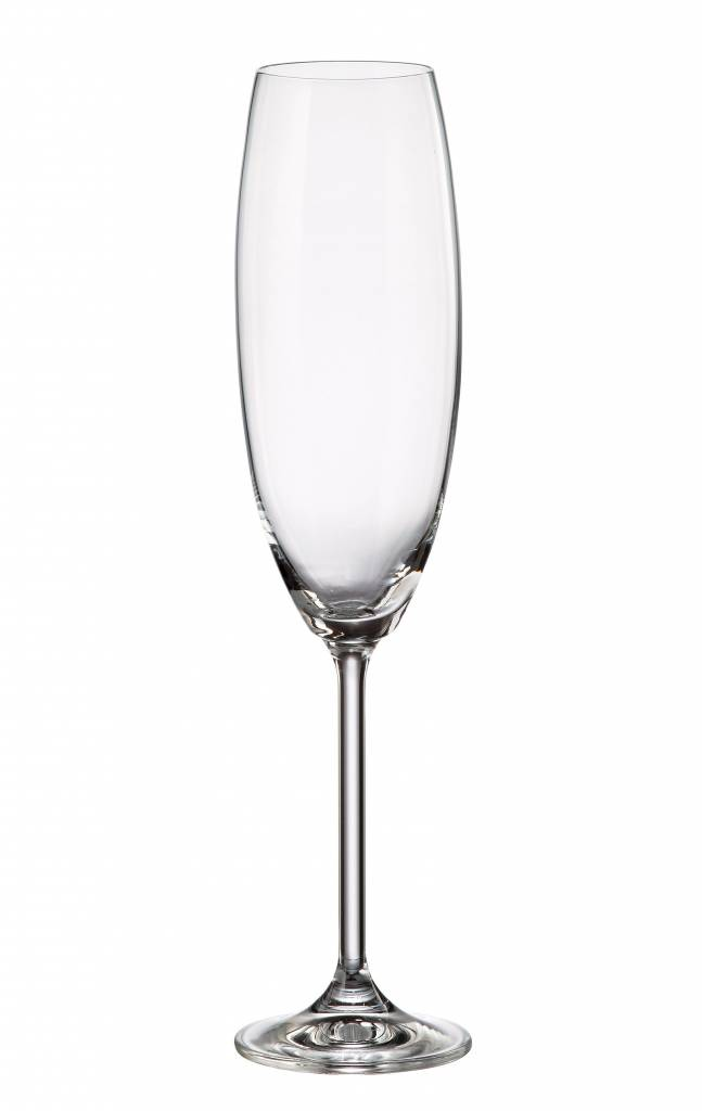 Anne champagneglazen 230ml