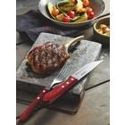 Churrasco Barbecue Spiezen en Steak messen