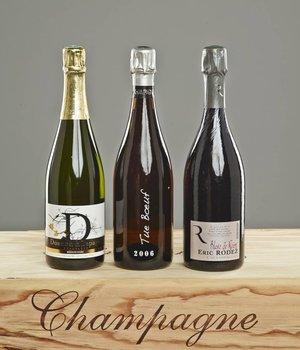 Probierpaket Blanc de Noir Champagner