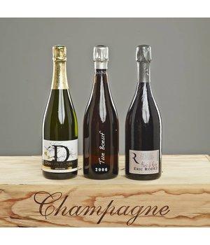 Probierpaket Blanc de Noir Champagnes