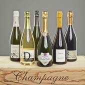 Probierpaket Blanc de Blancs Champagner