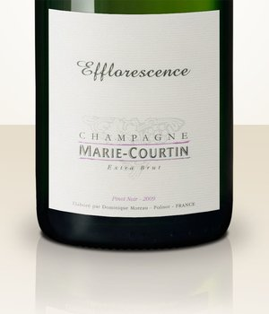 Marie Courtin Efflorescence 2010